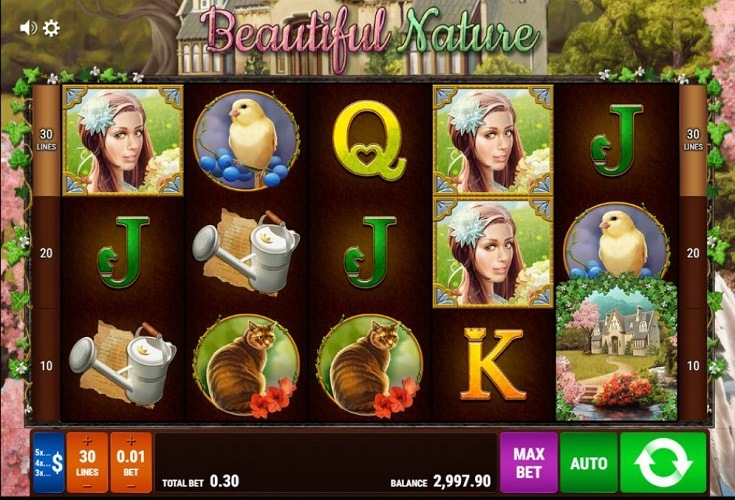 Online Casino 758606